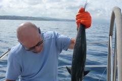 Tunfischfang in der Bucht von St. Tropez