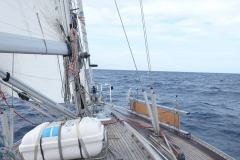 Morgenstimmung auf dem Weg nach Korsika